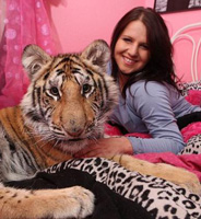 felicia tigre